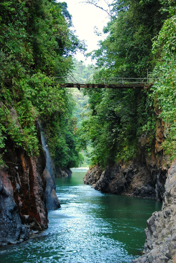 Exploradores_Costa_Rica_-_Bridge